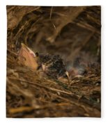 Two Baby Sparrows In A Nest Fleece Blanket