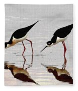 Two Black Neck Stilts Eating Fleece Blanket