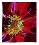 Two Different Bees Sharing  Fleece Blanket