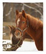 Two Horses In Winter Day Fleece Blanket
