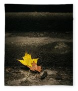 Two Leaves On A Staircase Fleece Blanket