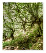 two little brothers Chasing Fairies in theBeech Forest on a summer day Fleece Blanket