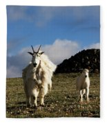Two Mountain Goats Oreamnos Americanus Fleece Blanket