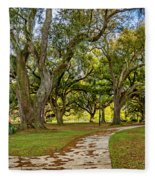 Two Paths Diverged In A Live Oak Wood...  Fleece Blanket