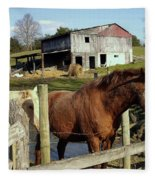 Two Quarter Horses In A Barnyard Fleece Blanket