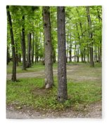 Two Roads Diverged Letchworth State Park Panorama Fleece Blanket