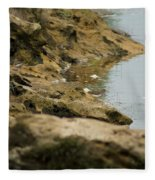 Two Spotted Sandpipers On The Flint Rivers Banks Fleece Blanket
