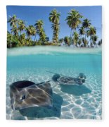 Two Stingrays 1 Fleece Blanket