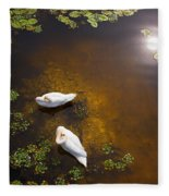 Two Swans With Sun Reflection On Shallow Water Fleece Blanket