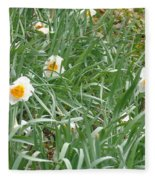 Two Toned Daffodils Fleece Blanket