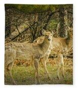 Two White Tailed Deer Fleece Blanket