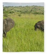 Ugandan Elephants Fleece Blanket