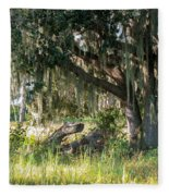 Under The Live Oak Tree Fleece Blanket