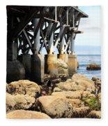 Under The Steinbeck Plaza Overlooking Monterey Bay On Monterey Cannery Row California 5d25050 Fleece Blanket