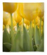 Under Yellow Tulips - 8x10 Format Fleece Blanket