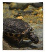 Underwater Turtle Fleece Blanket