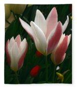 Unfolding Tulips Fleece Blanket
