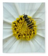 Up Close With The Bee And The Cosmo Fleece Blanket