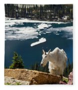 Up From The Lake Fleece Blanket