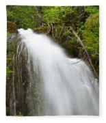 Upper Cougar Falls Fleece Blanket