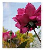 Upward Roses Fleece Blanket