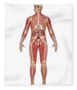 Urinary, Skeletal & Muscular Systems Fleece Blanket