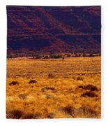 Utah Winter Sun Fleece Blanket