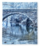 Valley Green Ducks In Winter Fleece Blanket