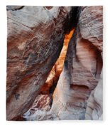 Valley Of Fire Mouse's Tank Canyon Fleece Blanket