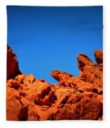 Valley Of Fire Nevada Desert Rock Lizards Fleece Blanket