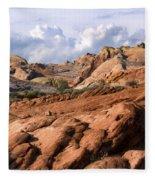 Valley View Fleece Blanket
