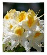 Vanilla Butterscotch Fleece Blanket