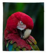 Vanity-close Up Of A Green Winged Macaw Fleece Blanket