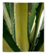 Variegated Agave Fleece Blanket