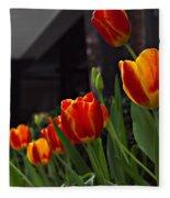 Variegated Tulips Fleece Blanket