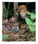 Veery At Nest Fleece Blanket