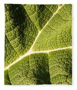 Veins Of A Leaf Fleece Blanket