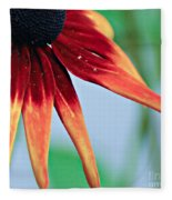 Velvet Petals Fleece Blanket