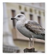 Venice Seagull Fleece Blanket
