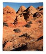 Vermilion Landscape Fleece Blanket