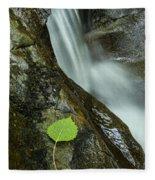 Vermont Aspen Leaf Waterfall Camels Hump Duxbury Fleece Blanket