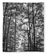 Vermont Forest Sunrise Ricker Pond Black And White Fleece Blanket