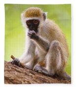 Vervet Monkey Fleece Blanket