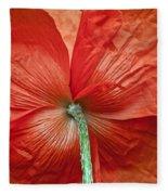 Veterans Day Remembrance Fleece Blanket