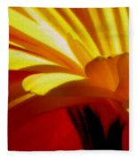 Vibrance  Fleece Blanket