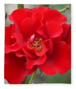 Vibrantly Red Rose Fleece Blanket