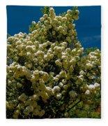 Viburnum Opulus Compactum Bush With White Flowers Fleece Blanket