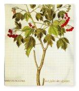 Viburnum Opulus Fleece Blanket
