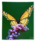 Viceroy Butterfly Square Fleece Blanket