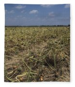 Vidalia Georgia Onion Fields Fleece Blanket